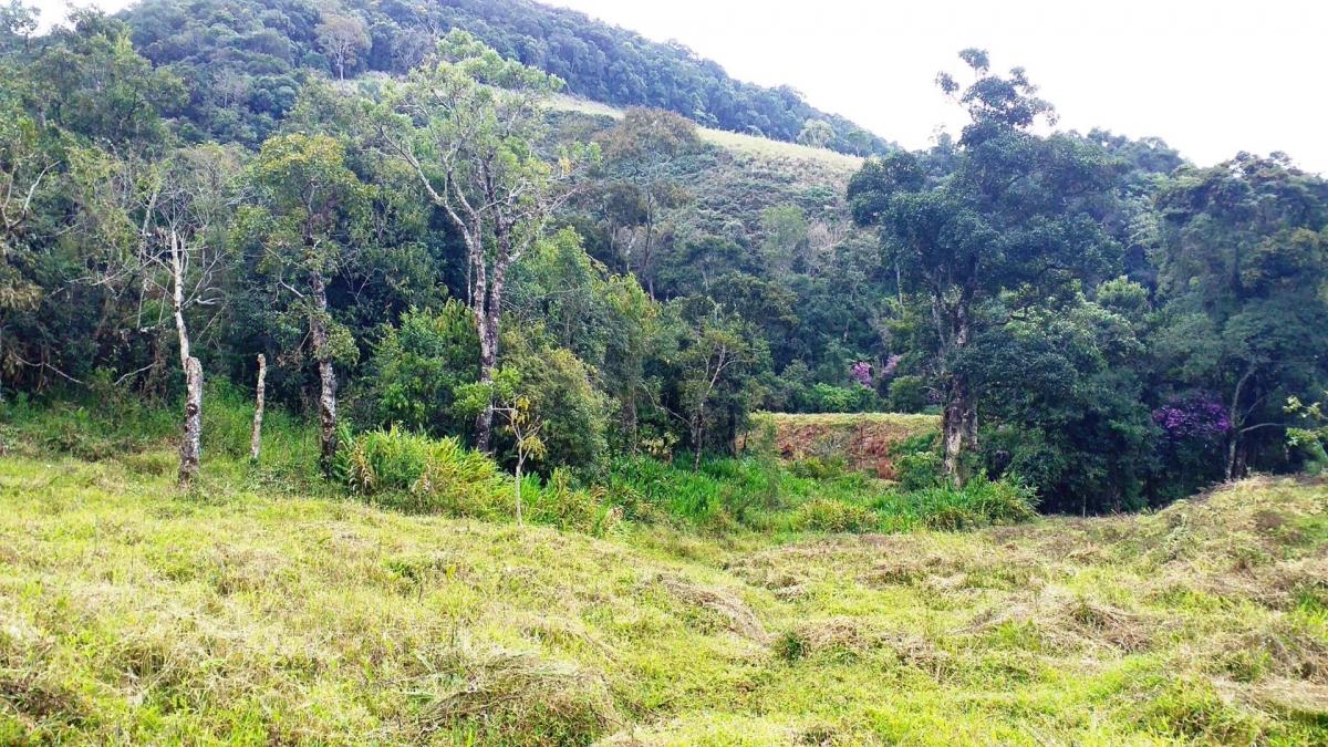 Terreno Rural em Paraisópolis